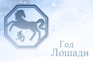 loshad 300x200 Год лошади