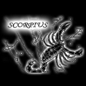 Sovmestimost skorpiona so znakami zodiaka.1 300x300 Совместимость скорпиона со знаками зодиака