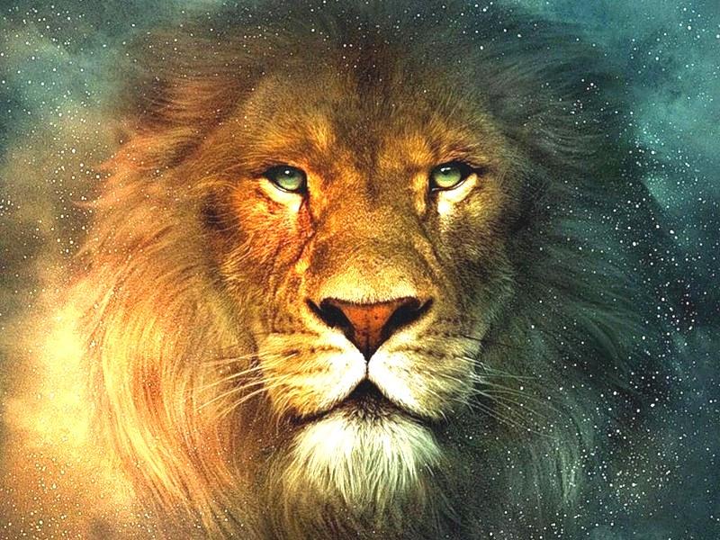 Гроскоп на неделю лев