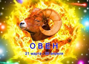 oven 300x217 Любовный гороскоп для Овнов